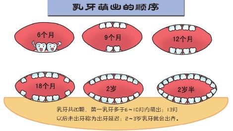 幼儿牙齿保健知识_儿童牙齿保健护理图解_丹东泓信医院口腔科